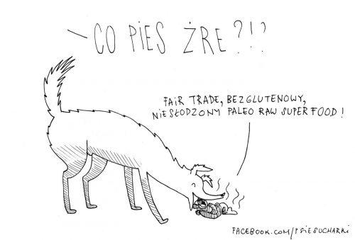 Dlaczego Pan Pies je śmieci?