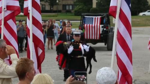 Labrador-weteran pożegnany z wojskowymi honorami