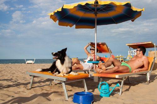 O co chodzi z psimi plażami we Włoszech?