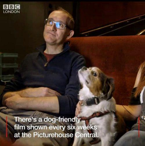 Do kina z psem? Picturehouse Central robi przełom w Londynie.