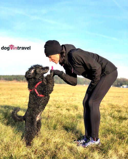Odrobaczanie psa – jak i kiedy trzeba to robić?
